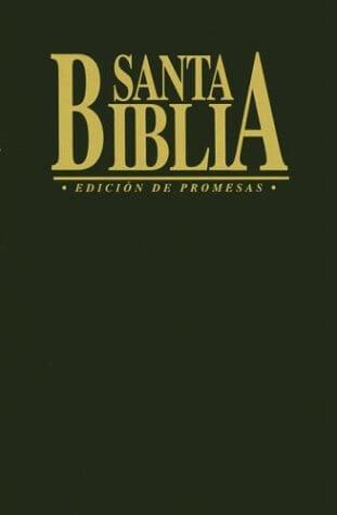 BIBLIA PROMESAS ECONOMICA NEGRA RUSTICA