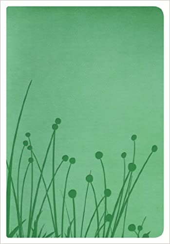 BIBLIA RVR 1960 PERSONALIZADO GREEN SIZE
