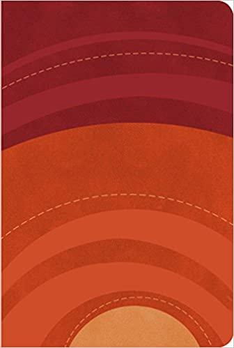 RVR 1960 Biblia Letra Grande Tamano Manual gamuza roja/naranja