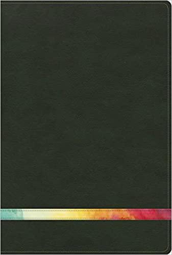BIBLIA DE ESTUDIO ARCO IRIS VERDE RVR 1960