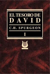 EL TESORO DE DAVID VOL I