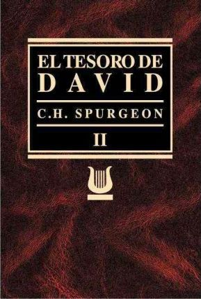 TESOROS DE DAVID VOL II